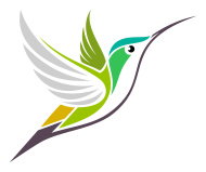 stock-illustration-31802020-hummingbird